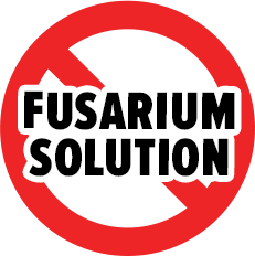 fusarium solution